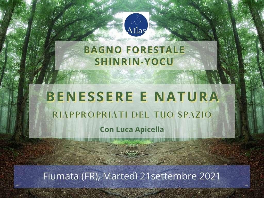 Bagno forestale - Shinrin-yocu